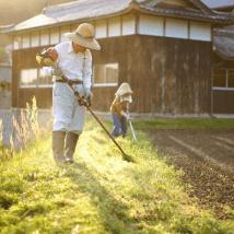 畑仕事をする祖父