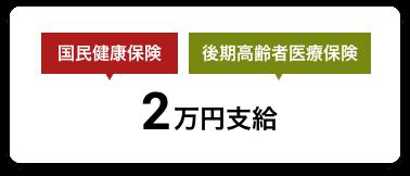 国民健康保険/後期高齢者医療保険 2万円支給