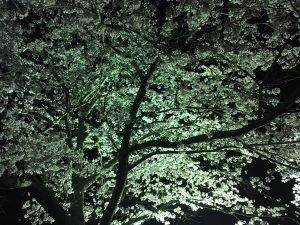 大の葬祭 想いのメモ帳(のつ)2018/4/2
