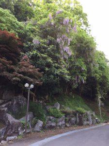 大の葬祭 想いのメモ帳(うすき)2018/5/1